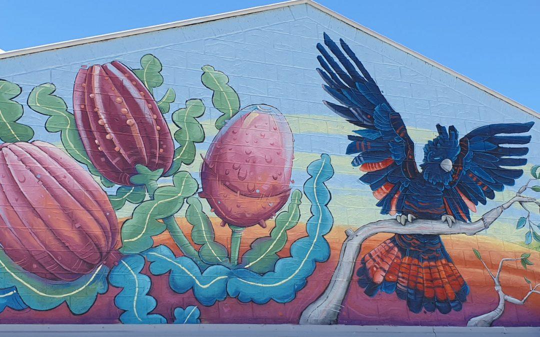 Alkimos Primary School Mural
